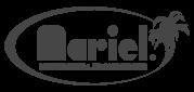 Mariel_Logo_grigio